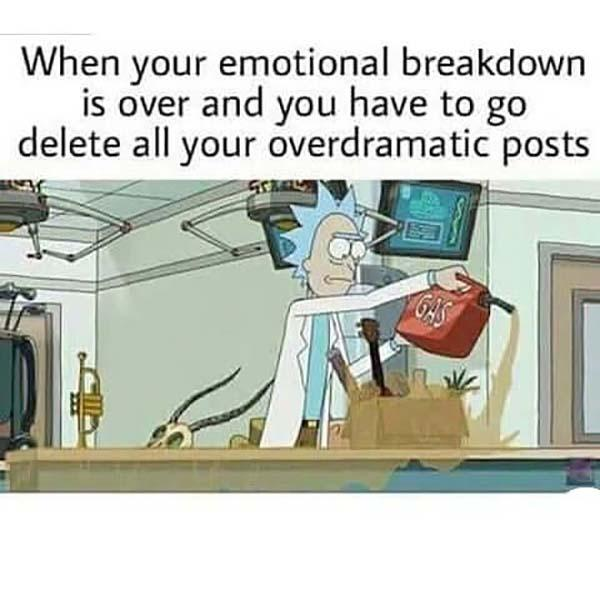 rick and morty memes when your emotional breakdown is over...