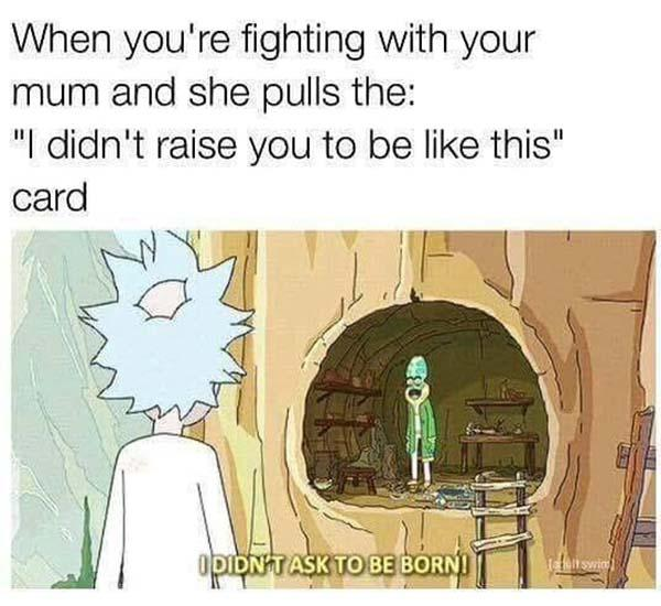 rick and morty memes when you're fighting with your mum