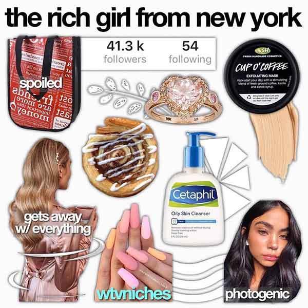 starter pack meme the rich girl from new york