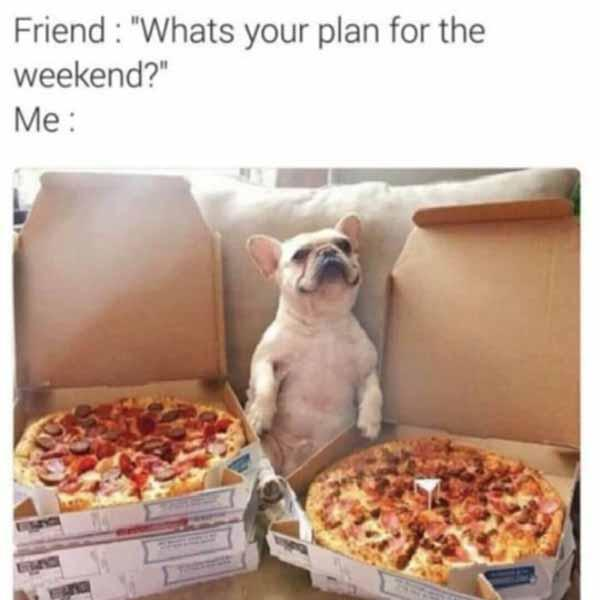 what's the plan for the weekend... pizza meme