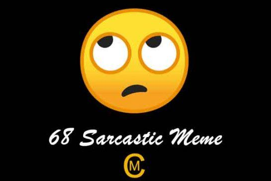 68 Sarcastic Meme