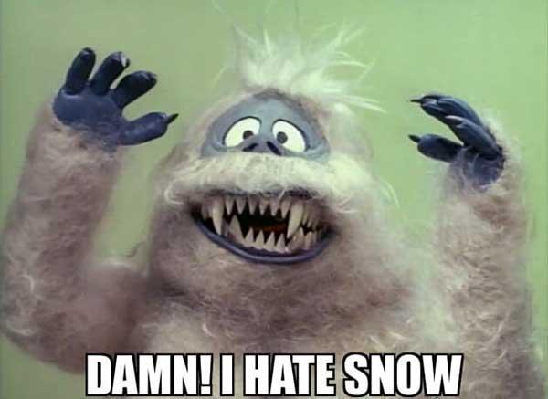 Damn! I hate snow