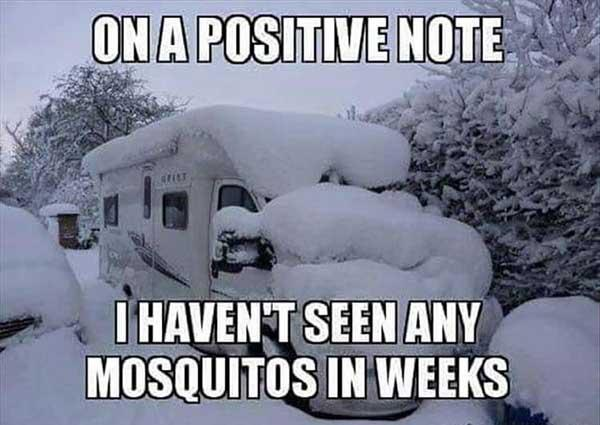 Funny Snowstorm Pictures