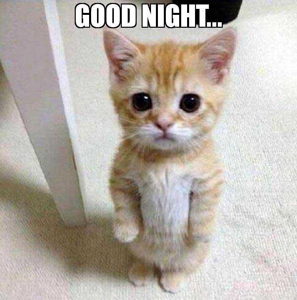 Good-night--meme
