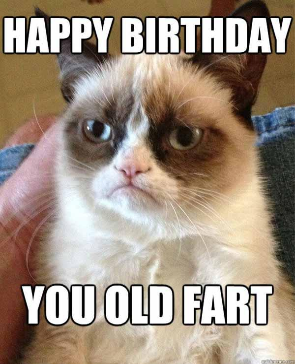 Happy-Birthday-you-old-fart grumpy cat