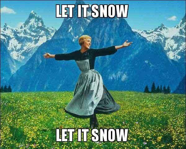 LET IT SNOW LET IT SNOW memes
