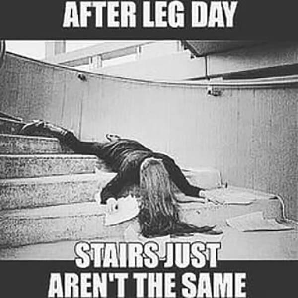 after leg day meme stairs just aren't the same