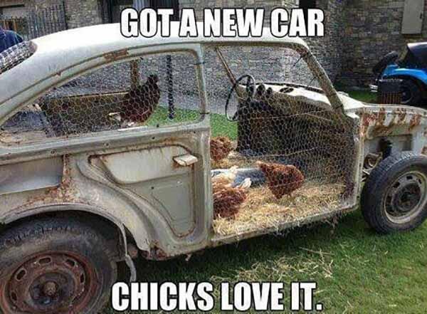 chicks-love-my-new-car