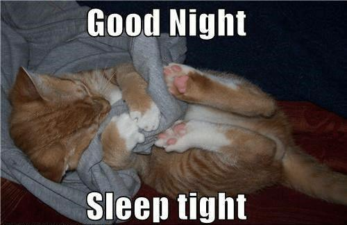 cute good night sleep tight meme