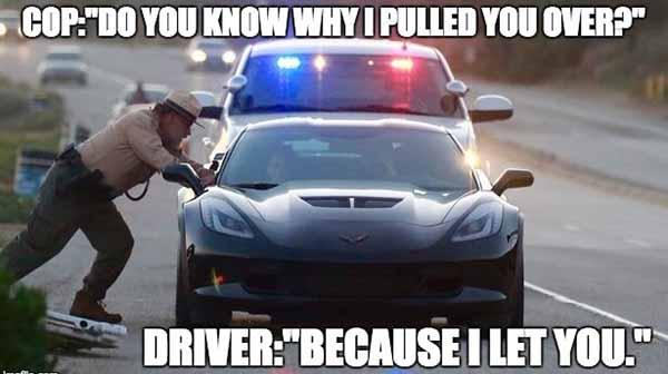 do you know why i pulled you over... police car meme