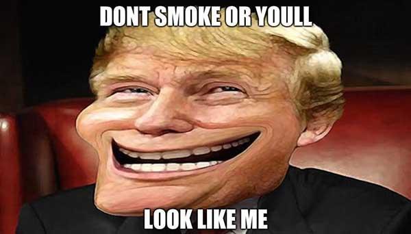 donald trump troll meme