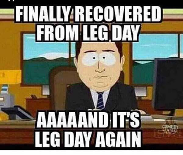 finally recovered from leg day...