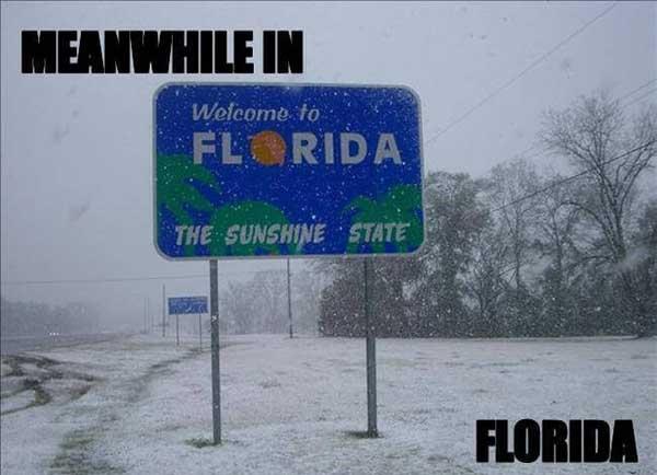 florida snow meme