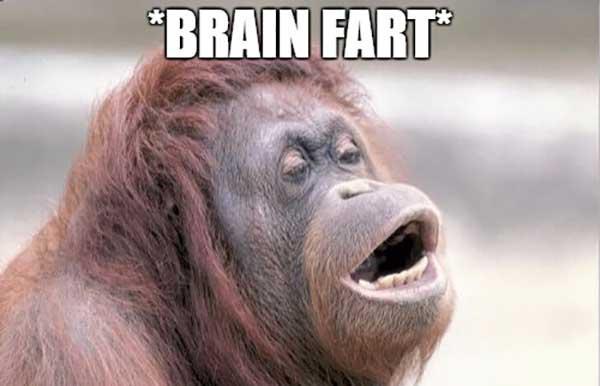 funny brain fart meme