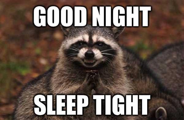 funny good night sleep tight meme