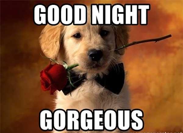 good-night-gorgeous-good nigt meme for er