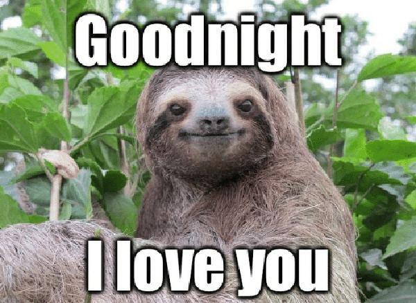 good night memes for her