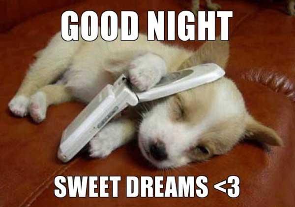 56 Best Good Night Meme Meme Central
