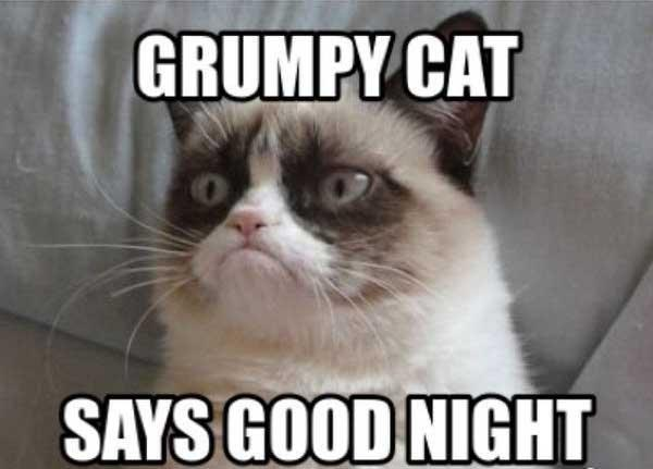grumpy cat say good night