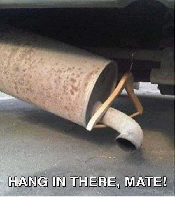 hang in there, mate! car memes
