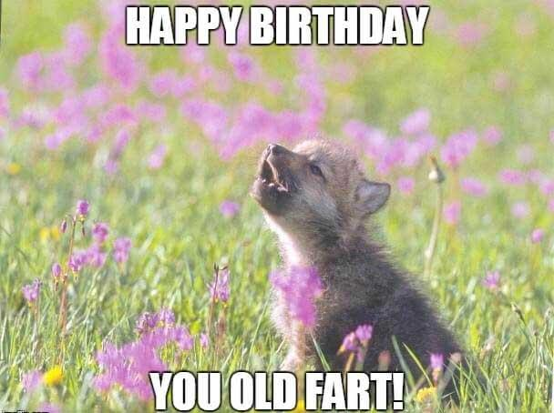 happy birthday you old fart meme