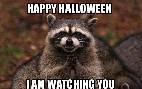 happy-halloween-im watching you