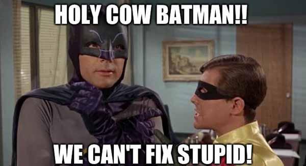 holy cow batman we can't fix stupid -holy batman meme