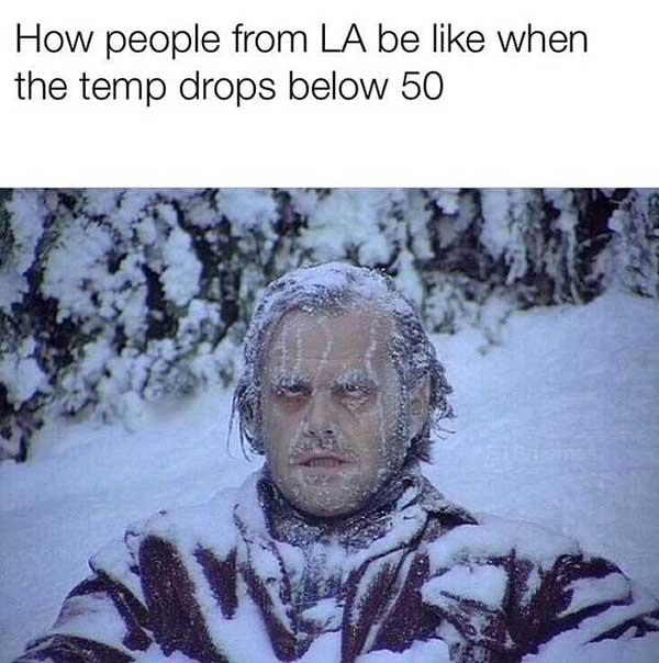 how people from LA be like when the temp drops below 50
