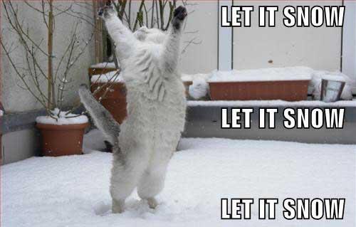 let it snow, let it snow, let snow - let it snow meme