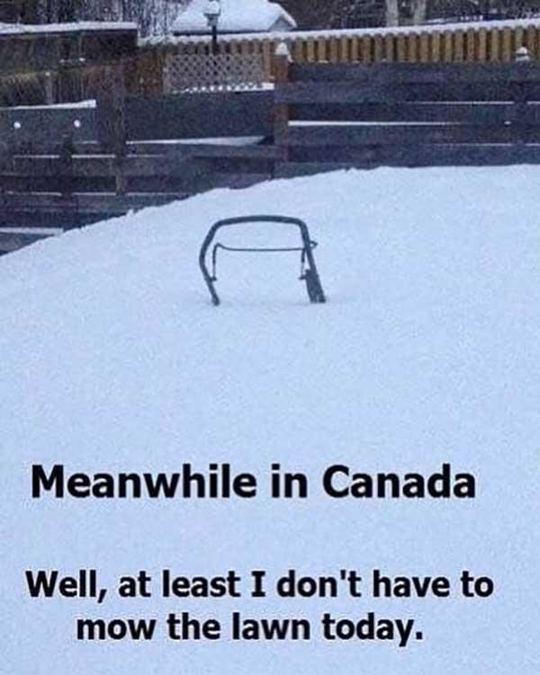 meanwhile in canada... snow meme
