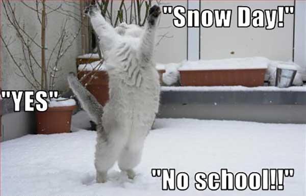 no snow day meme