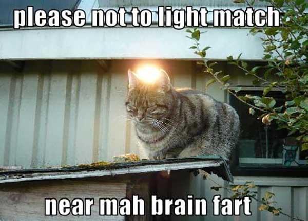 please not to light match near mah brain fart
