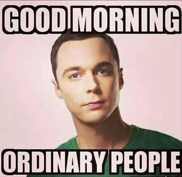 sarcastic good morning meme