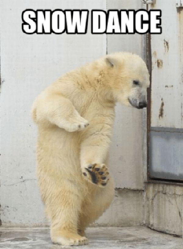 snow dance meme