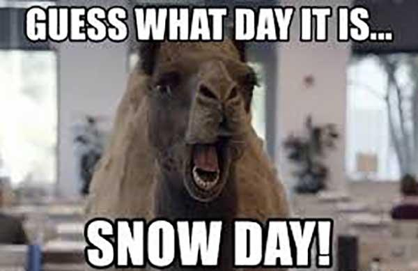 snow day memes