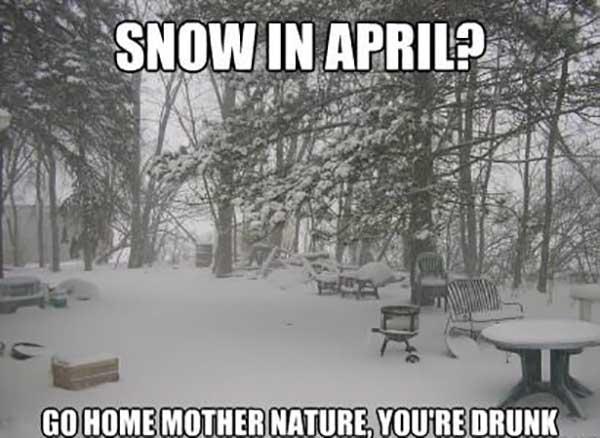 snow in april meme