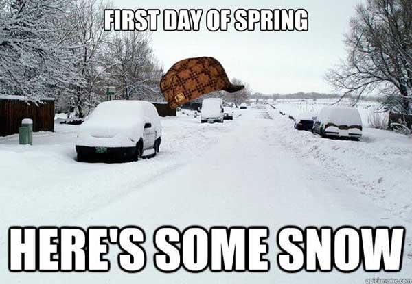 snow in spring meme