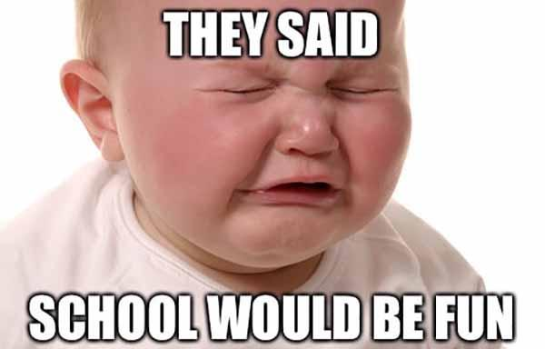 they said school would be fun - baby crying meme