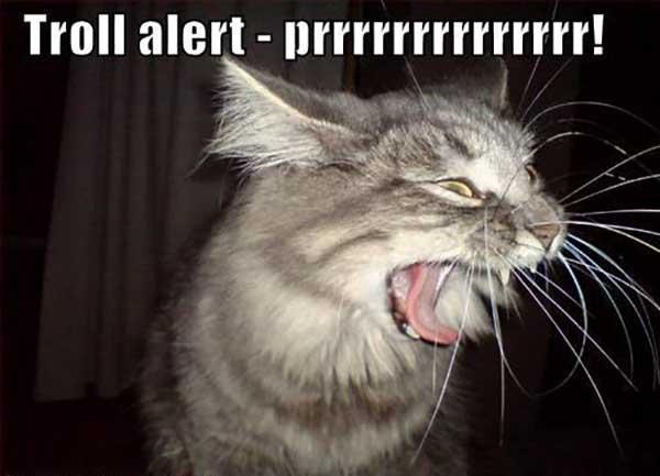 troll alert prrrrrrrrr
