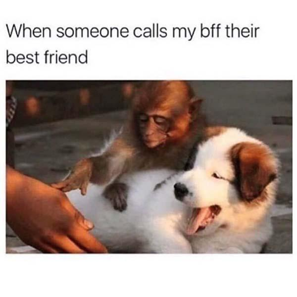 when someone calls my bff theis best fiend... savage meme