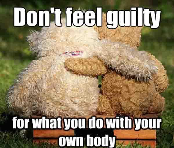 Funny-Bear-Meme-Dont-Feel-Guilty