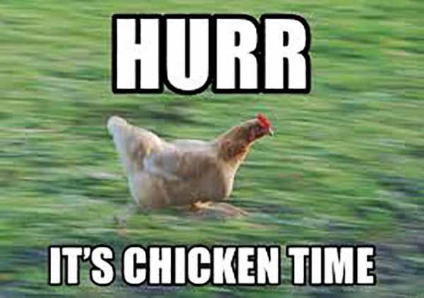 Hurr It's chicken time - Running Chicken