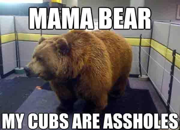 Mama bear My cubs are assholes