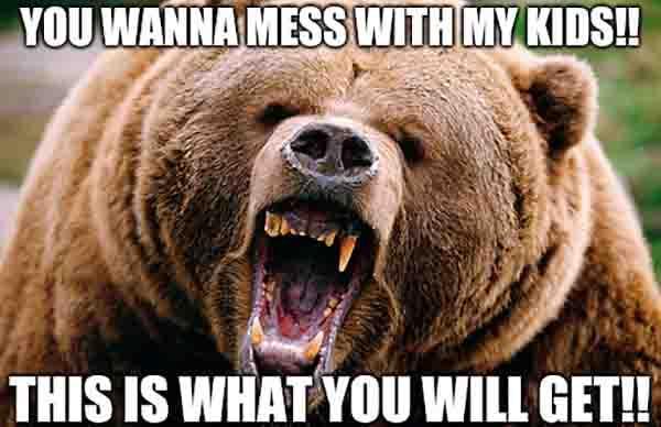 Momma Bear Memes