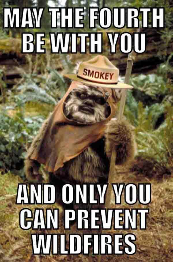 Smokey Bear may the fourth be with you
