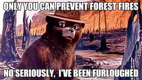 Smokey the Bear has been furloughed