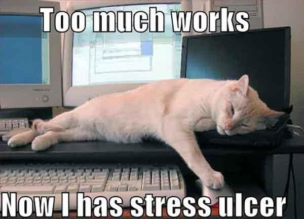 Too much works Now - work stress meme