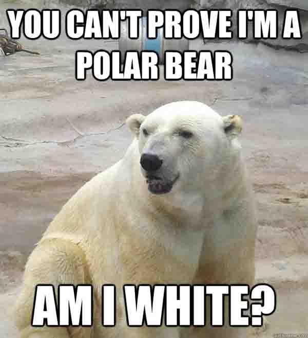 You-Cant-Prove-I-Am-A-Poolar-Bear-Funny-Meme