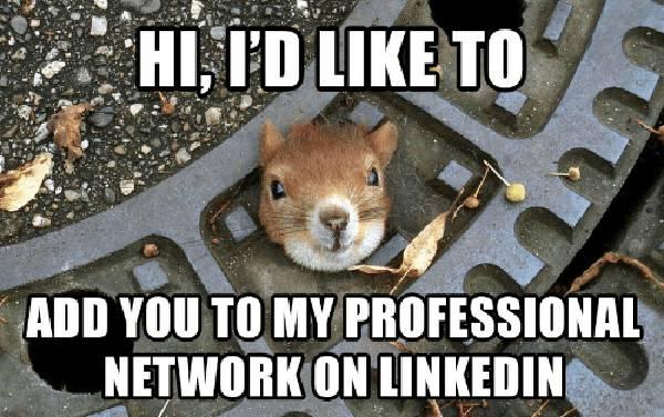 add squirrel meme