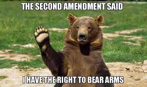 bear arms meme